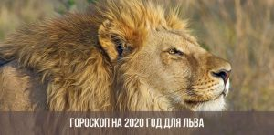 Гороскоп на март 2019 года Лев