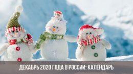 Декабрь 2020 года в России: календарь