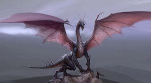 Гороскоп для женщины Дракона на 2020 год