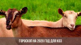 Гороскоп на 2020 год для коз