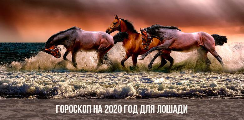 Гороскоп на 2020 год для Лошадей