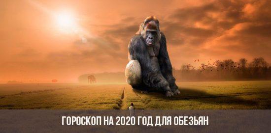Гороскоп на 2020 год для Обезьян