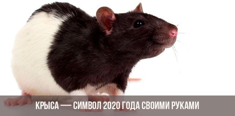 Как сделать Крысу символ 2020 года своими руками
