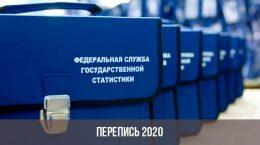 Перепись населения в 2020 году