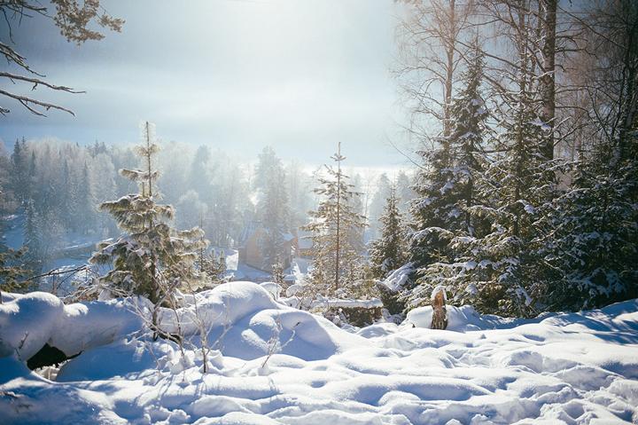Погода на Алтае в январе