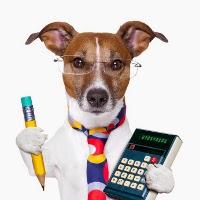 собака с калькулятором