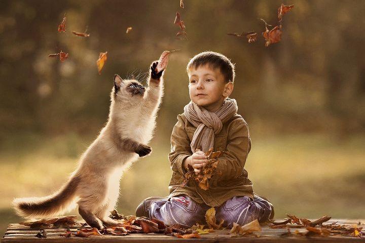 Мальчик и кот в осенних листьях