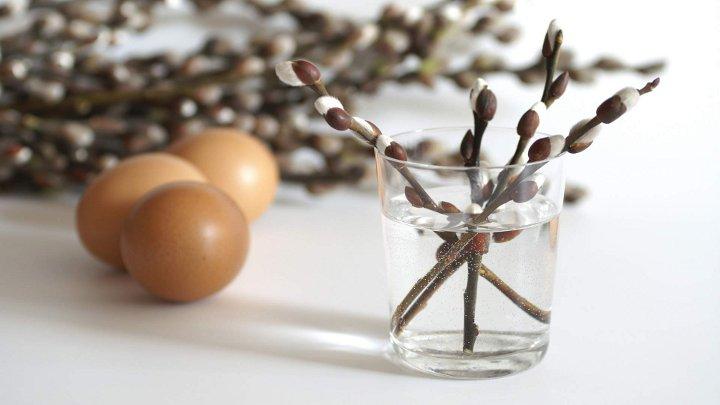 веточки вербы в стакане и яйца
