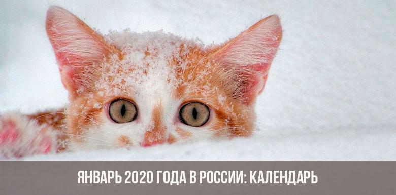 Январь 2020 года в России: календарь, праздники, выходные