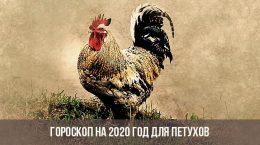 Гороскоп на 2020 год для Петухов
