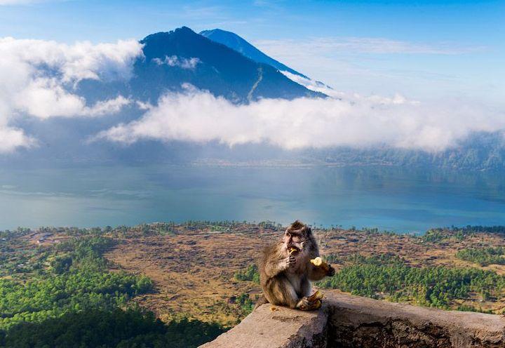 Новый 2020 год на Бали