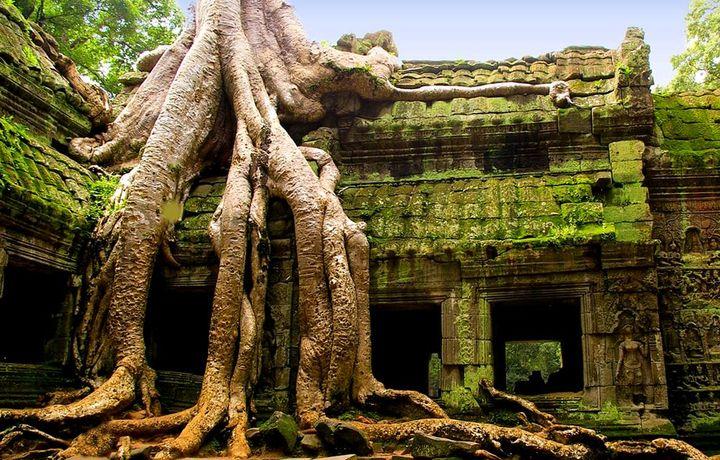 Новый 2020 год в Камбодже