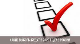Какие выборы будут в 2020 году в России