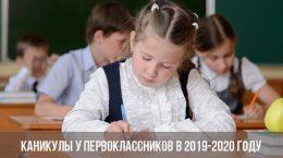 Каникулы у первоклассников в 2019-2020 году