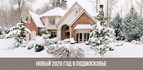 Новый год в Подмосковье в 2020 году