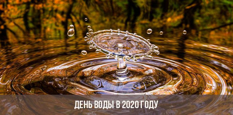 День воды в 2020 году