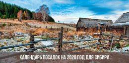 Календарь посадок 2020 год для Сибири