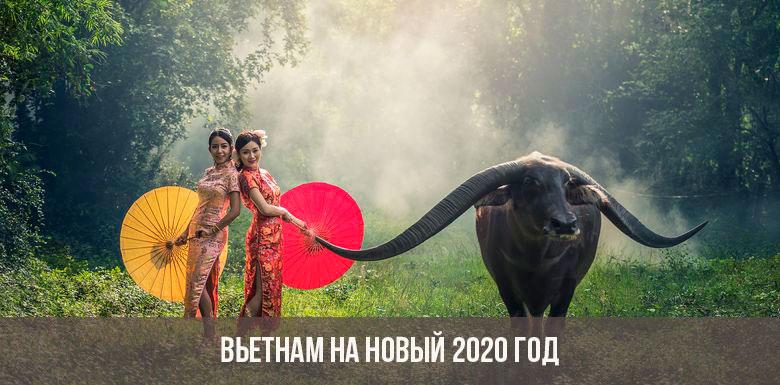 Вьетнам на новый 2020 год