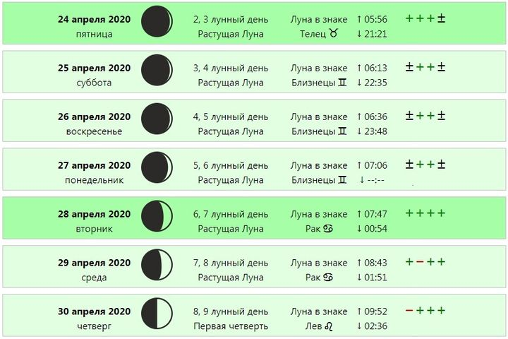 Лунный календарь посадки цинии