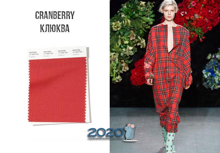 Cranberry (№17-1545) цвет Пантон зима 2019-2020