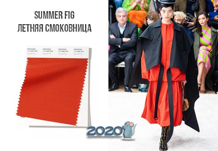 Summer Fig (№17-1450) цвет Пантон зима 2019-2020