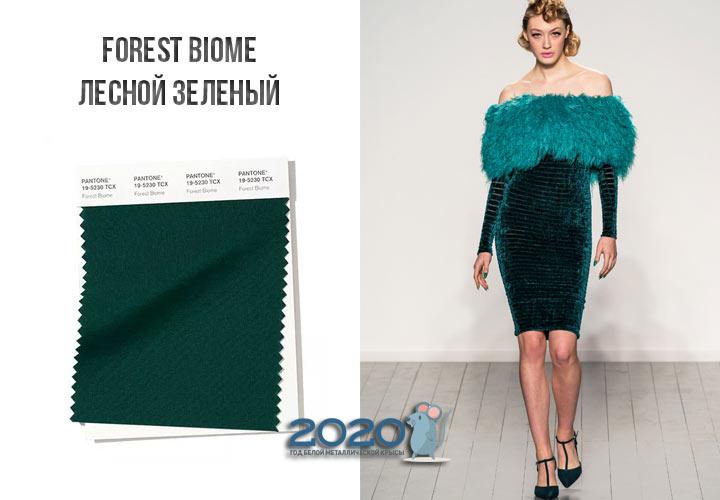 Forest Biome (№19-5230) цвет Пантон зима 2019-2020