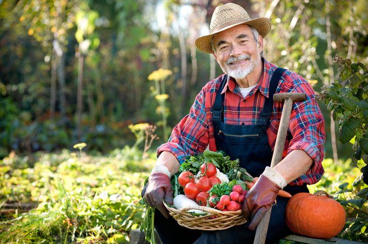 Фермер с урожаем