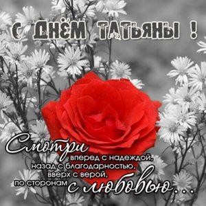 открытка ко Дню Татьяны в 2020 году