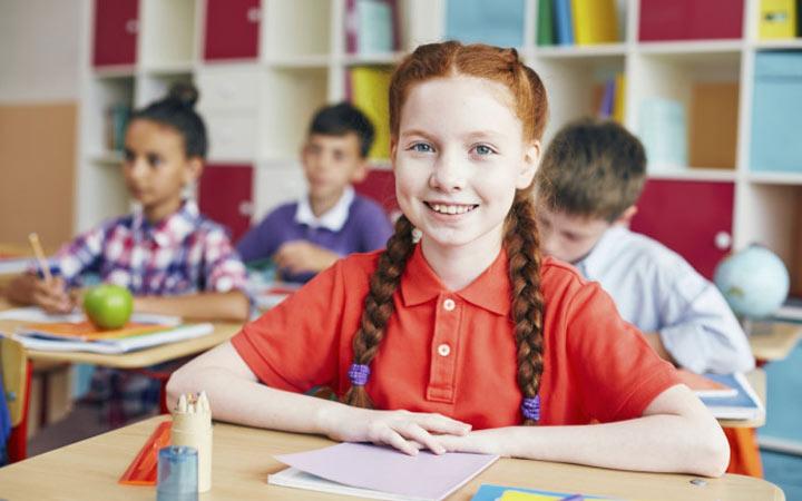 Обязательные и необязательные предметы в 5 классе в 2019-2020 году