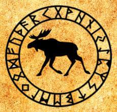 Лось - тотем Славянского гороскопа