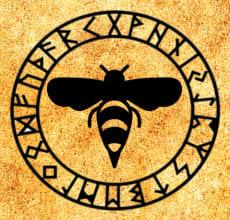 Оса- тотем Славянского гороскопа