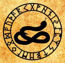 Уж - тотем Славянского гороскопа