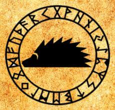 Еж - тотем Славянского гороскопа