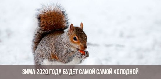 Зима 2019-2020 года