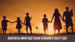 Помощь многодетным семьям в 2020 году