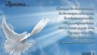 Прощеное Воскресенье 2020 - открытка с голубем мира со стихами