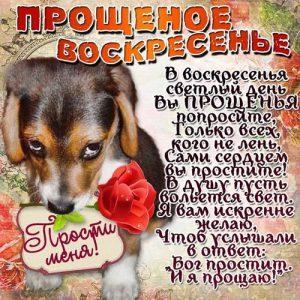 С Прощеным Воскресеньем открытка с собачкой