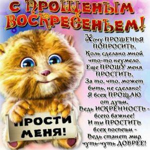С Прощеным Воскресеньем открытка с котиком
