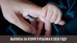 Выплаты за второго ребенка в 2020 году