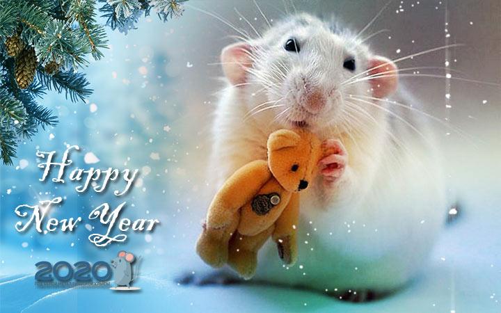 Новогодние картинки с мышками, крысками и другими героями на 2020 год