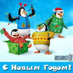 Новогодние пингвины - картинка на 2020 год