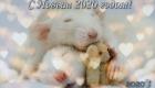 Картинка новогодняя с милыми крысками на 2020 год