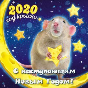Новогодняя мини-открытка с мышкой на 2020 год