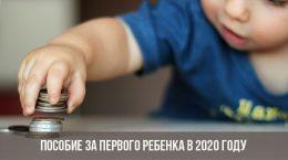 Пособие за первого ребенка в 2020 году