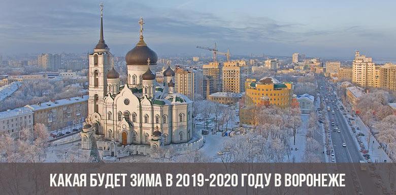 Какая будет зима в 2019-2020 году в Воронеже