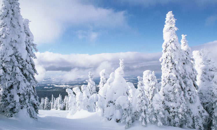 Прогноз погоды на зиму 2019-2020 для Башкирии