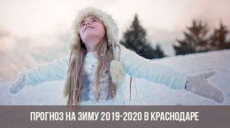 Зима в Краснодаре в 2019-2020 году