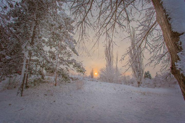 Краснодар зимой