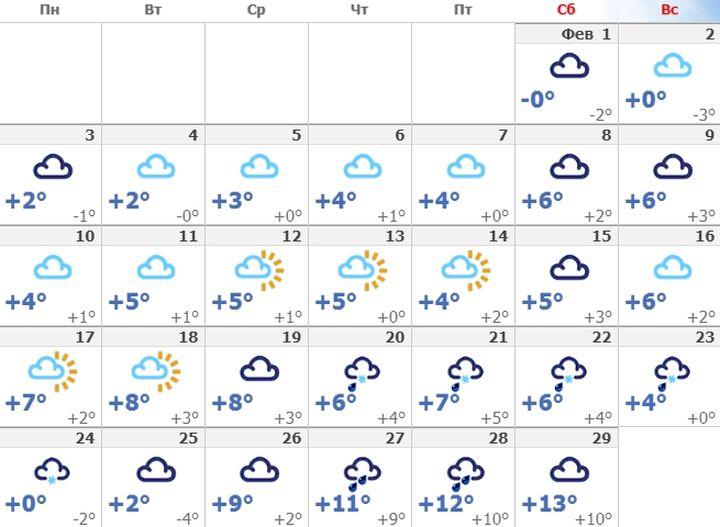 Погода в Ялте в феврале 2020 года