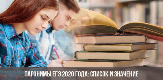 Паронимы ЕГЭ 2020 года: список и значение